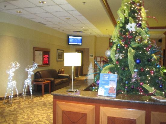 Holiday Inn Winnipeg - Airport West: Christmas decorations