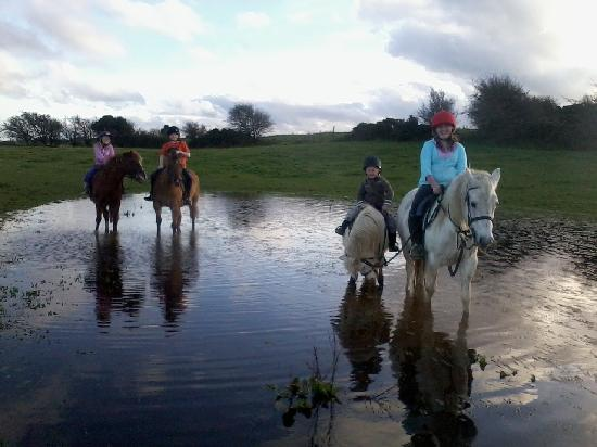 Tipperary Mountain Trekking Centre County Tipperary