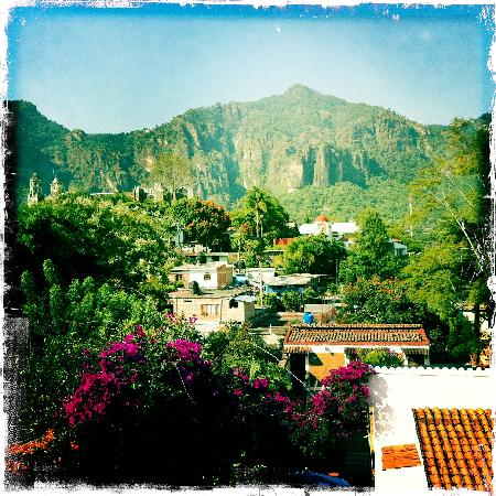 Villas Xochiquetzal Hotel: more view