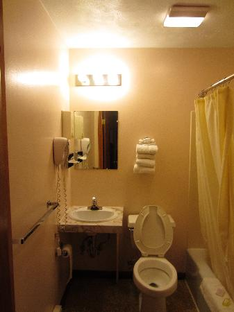 Browns Hill Tavern & Motel : Bathroom