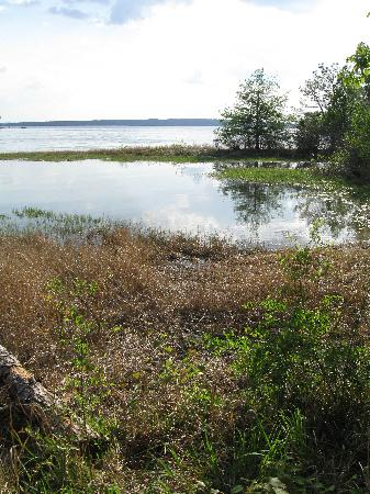 South Toledo Bend State Park: The Lake