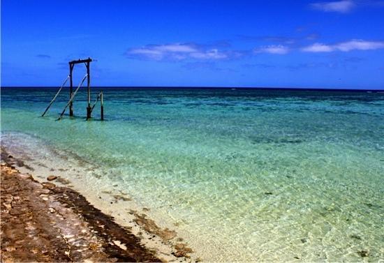 Heron Island Resort: The Gantry - another snorkeling spot