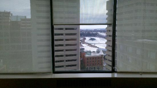 The Westin Edmonton: Large windows and view.