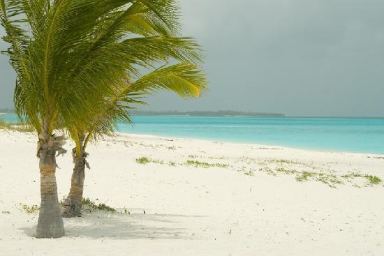 Treasure Cay Beach Marina Golf Resort He Most Beautiful I Ve