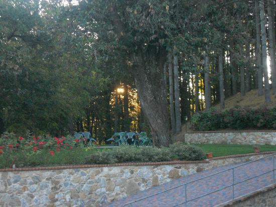 Montaldo di Mondovi, Itálie: Hotel gardens towards the chestnut woods