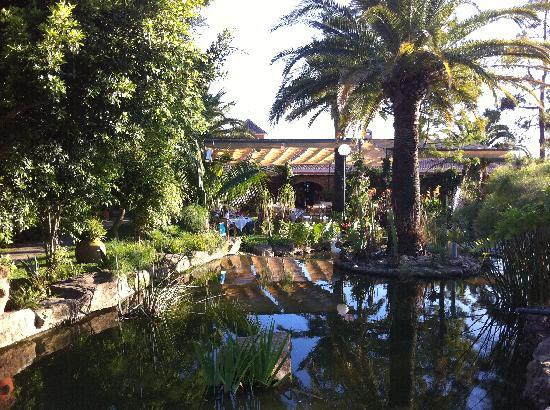 Hotel Punta Sur: Hotel Gardens