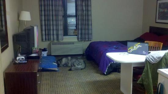 Extended Stay America - Chicago - Gurnee: Plenty of room! Queen bed.