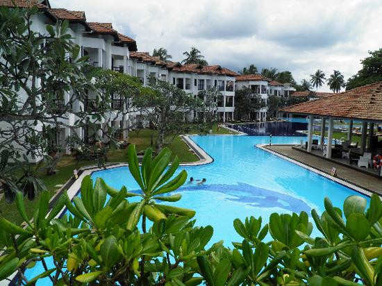Вайккал, Шри-Ланка: Pool from Pizzeria