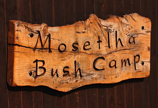 Mosetlha Bush Camp & Eco Lodge: This way to Mosetlha ...