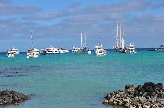 Finch Bay Galapagos Hotel: Porta Ayorta Bay