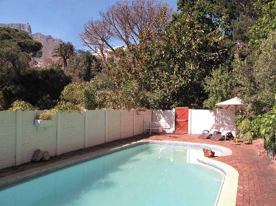 Mountain Magic Garden Suites: Swim by the Table Mountain view