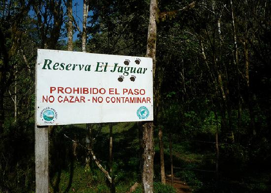 Reserva El Jaguar