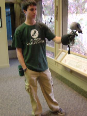 Oak Mountain State Park: Oak Mountain Wildlife Rehab