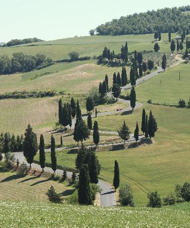 Tuscany by GC: The Road to Monticchielo