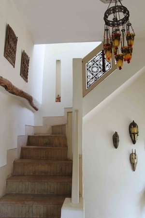 Riad Al Massarah : Stairs to the terrace