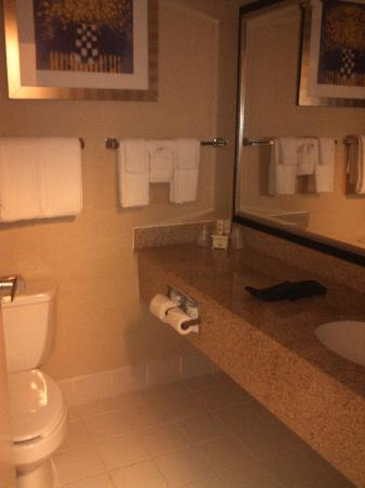 BEST WESTERN Benton Harbor-St. Joseph: Bathroom