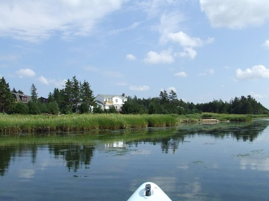 Covehead Bay B&B: kayaker's paradise