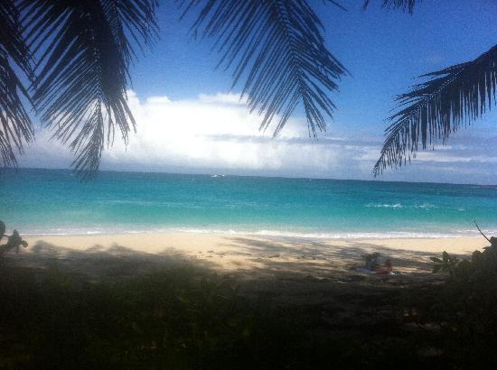 Sivananda Ashram Yoga Retreat: View