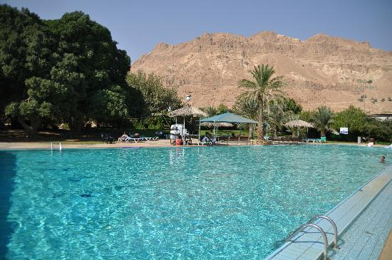 Ein Gedi, Israele: The Pool