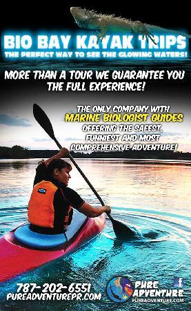 Pure Adventure : Bio Bay Adventure, Fajardo