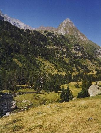 Midi-Pyrenees, France: Wild camp site in the Pyrenees