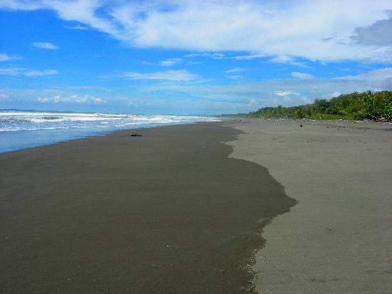 Bahari Beach Bungalows: Strand direkt vor dem Arial