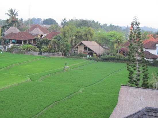 Tegal Sari: View from our balcony and bathroom in Sesapi