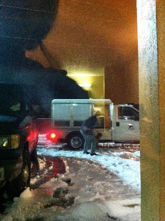Red Roof Inn Acworth: Animal control takes the dog away.
