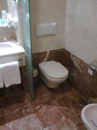 Villamadrid Hotel: wc