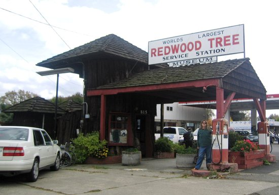 ‪World's Largest Redwood Tree Service Station‬