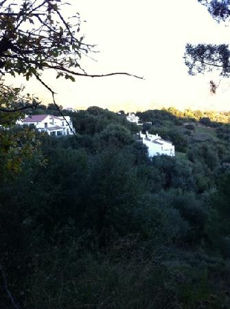 "Hermitage De Casares: view from the ""backyard"""