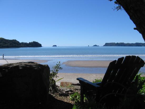 Buffalo Beach & Mercury Bay from Beachfront Resort, Whitianga, NZ