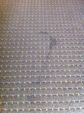 Comfort Suites - Near the Galleria: floor stain in middle of room