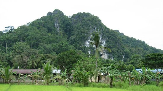 Shows Ugong Rock in Palawan