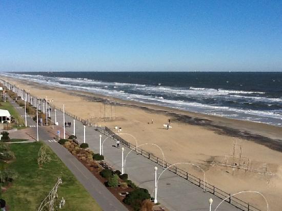Hampton Inn Virginia Beach Oceanfront North: What a view!