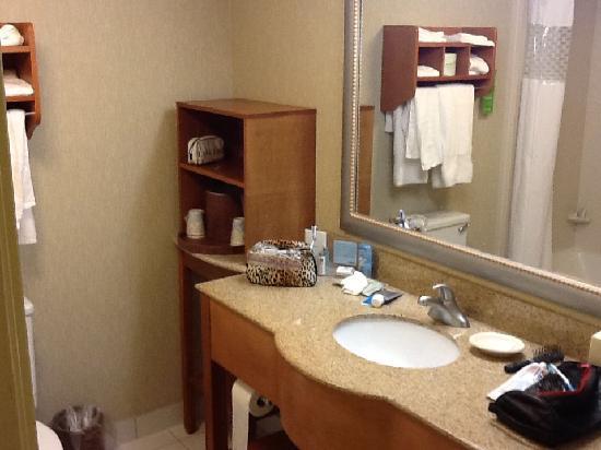 Hampton Inn Virginia Beach Oceanfront North: Lovely clean bathroom.