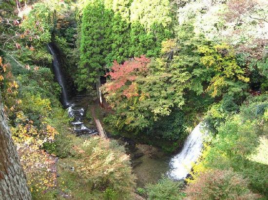 Yoro Valley: 上から見下ろした小沢又の滝