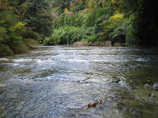 Yoro Valley: 中瀬遊歩道から見た養老川