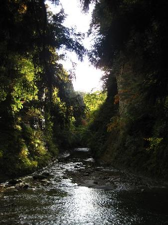 Yoro Valley: 弘文洞跡