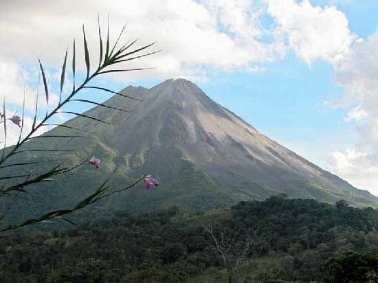 Hotel Mountain Paradise: Arenal Volcano LaFortuna CR