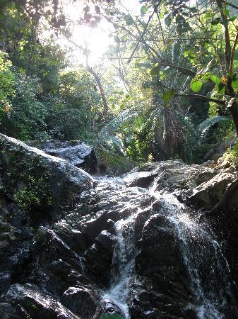 Los Naranjos Retreat: walking up to the waterfall