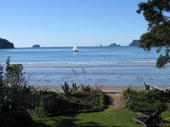 ‪بيتشفرونت ريزورت: View from garden, Beachfront Resort, Whitianga, The Cormandel, NZ‬