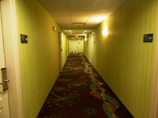 Hampton Inn & Suites Wilder: Hallway