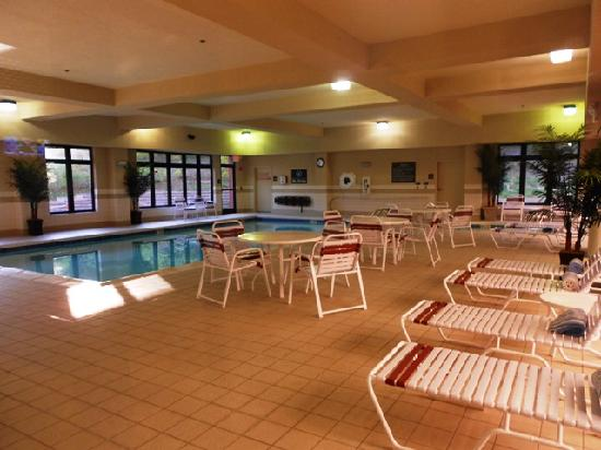 Hampton Inn & Suites Wilder : Pool area