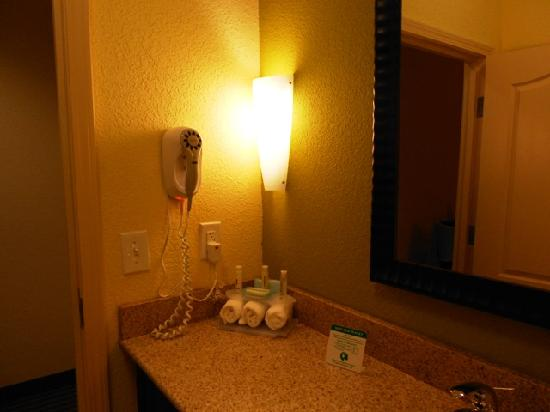 Holiday Inn Express Hotel & Suites Greenville: Amenities
