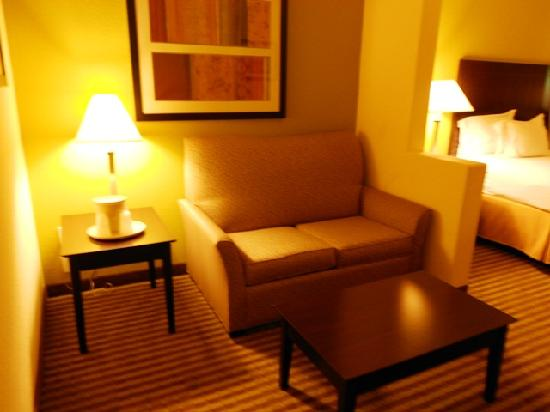 Holiday Inn Express Hotel & Suites Greenville : Sofa