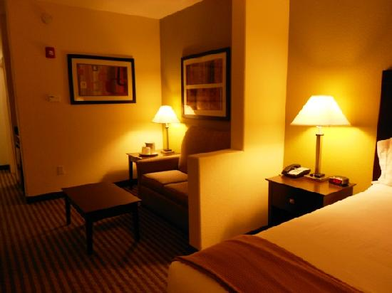 Holiday Inn Express Hotel & Suites Greenville : Suite