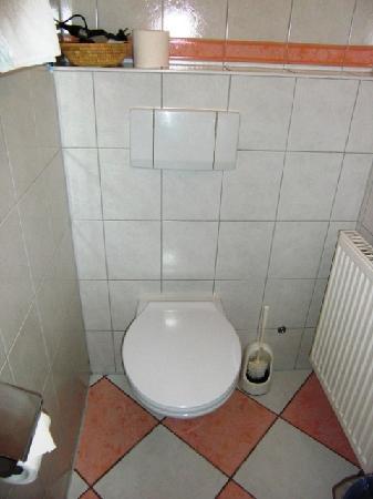 Hotel und Restaurant Goldenes Fass: Toilette