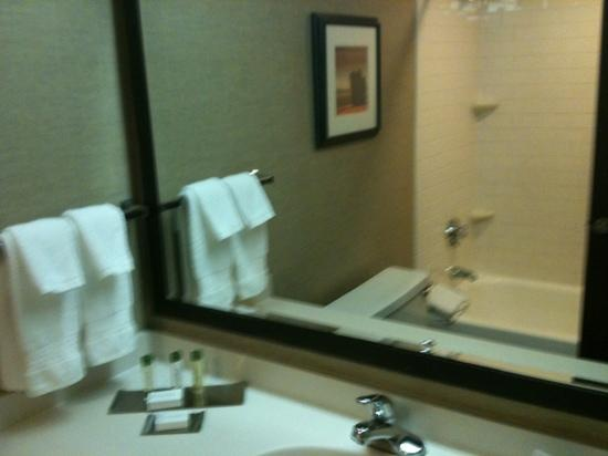 DoubleTree by Hilton Hotel Pittsburgh-Meadow Lands : bathroom