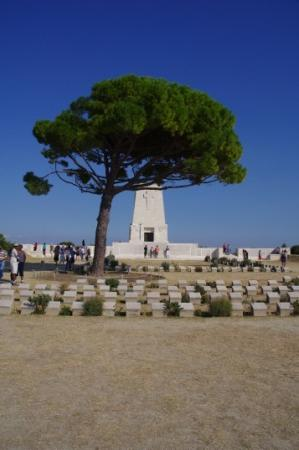 Lone Pine Cemerary - Picture of Gallipoli National Park ...